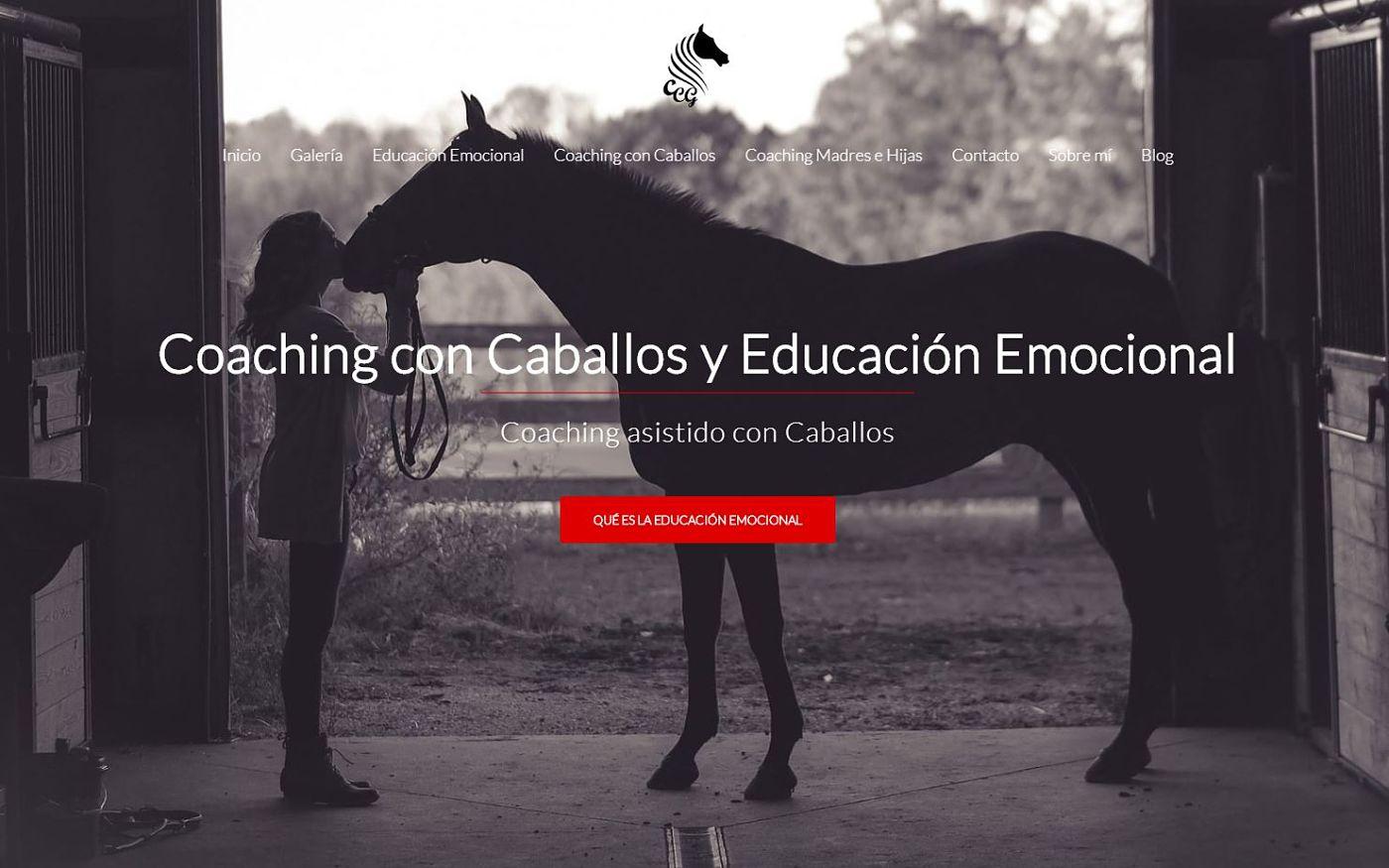 diseño para coach caballos madrid